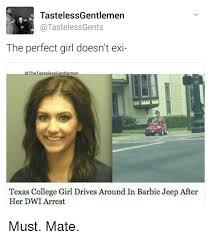 Perfect Girl Meme - tastelessgentlemen tastelessgents the perfect girl doesn t exi