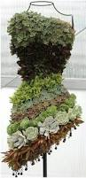 Vertical Succulent Garden Indoor - pin by cindy stovall on succulents pinterest yards and gardens