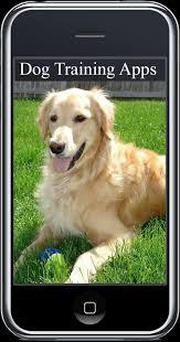 247 best dog training images on pinterest dog obedience training