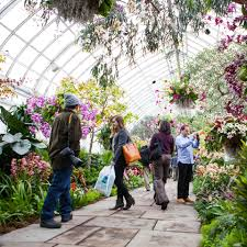 Botanical Garden Orchid Show The Orchid Show Events City Of New York