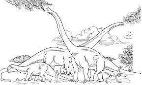 barosaurus hypselosaurus brachiosaurus and gallimimus