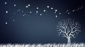creative tree wallpaper 50650 1920x1080 px hdwallsource com
