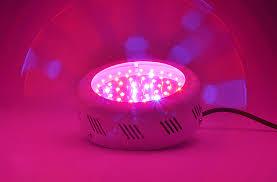 ufo led grow light morbo ufo led plant grow light 50 watt 50 leds 7 inch