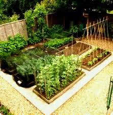 kitchen gardening ideas small kitchen garden images designs beautiful vegetable gardens