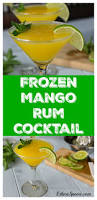 best 25 mango rum ideas on pinterest tropical alcoholic drinks