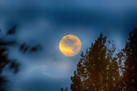 see it 2017 u0027s harvest moon astronomy essentials earthsky