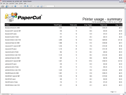 daily activity report sample reporting in detail report printer usage summary