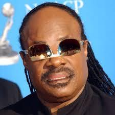 Stevie Wonder Memes - stevie wonder officialswonder twitter