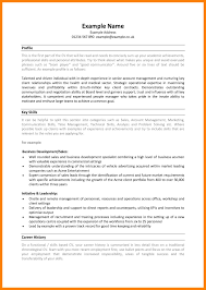 Sales Resume Bullet Points 100 Advantage Resumes Professional Resum 233 Examples Of