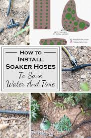 Cool Hoses by Best 25 Drip Watering System Ideas On Pinterest Drip Irrigation