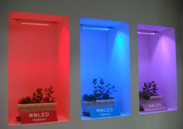 best light for plants is pink best led color to grow plants nikkei xtech