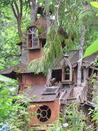 Coolest Treehouses Images About Project Tree House On Pinterest Treehouse Houses And