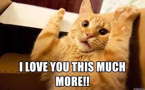 I Love You This Much Meme - i love you this much more gato acorolado meme generator