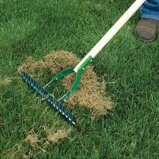 concimazione tappeto erboso rigenerare il prato speciali