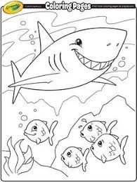 shark coloring pages print shark coloring pages