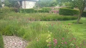 using grasses to enhance your outdoor design garden ideas garden