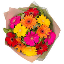 gerbera bouquet gorgeous gerberas bouquet 12 special roses only featured