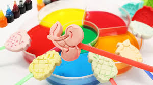 learn colors for toddlers dye coloring play doh fruits creative