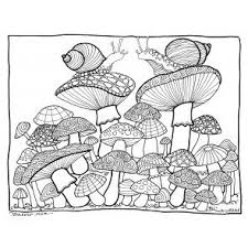 92 magic mushrooms images mushrooms