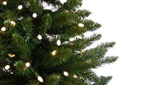 How To Put Christmas Lights On Tree by How To Hang Christmas Tree Lights Diy Decorator