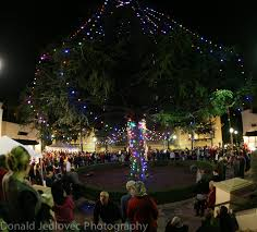 Christmas Tree Lighting Christmas Tree Lighting Mission San Jose Chamber Of Commerce