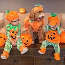 30 Best Halloween Trick Or Treats Images On Pinterest 386 Best Halloween Decorating Images On Pinterest Happy