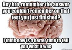 Scumbag Brain Meme Generator - understands advanced calculus has to sing the alphabet song to