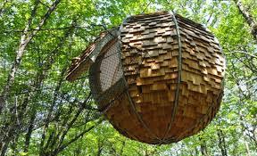chambres dans les arbres cabane dans les arbres morbihan hébergement insolite morbihan