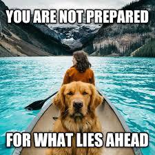 Adventure Meme - livememe com adventure dog