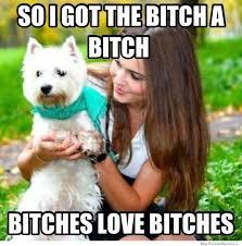 Bitches Love Meme - bitches love meme weknowmemes
