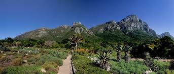 Kirstenbosch Botanical Gardens Kirstenbosch National Botanical Gardens Reviews U S News Travel