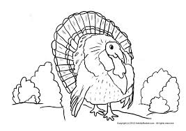 thanksgiving turkey colouring 594549 coloring pages