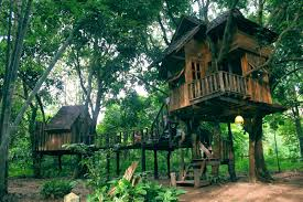 Coolest Treehouses Treehouse Resorts Design Of Your House U2013 Its Good Idea For Your Life