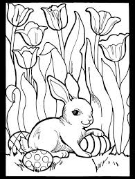 25 easter colouring ideas easter bunny pics