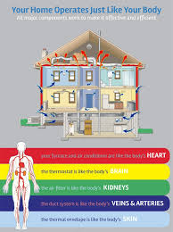 Comfort Institute Your Home Operates Like Your Body Why Is This Important