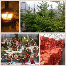 cribstown garden centre home facebook