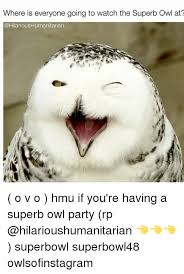 Superb Owl Meme - where is everyone going to watch the superb owl at o v o hmu if you