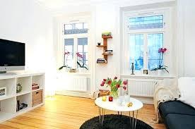 Studio Apartment Living Room Ideas Decorating A Studio Apartment Joeleonard