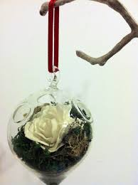 512 best terrariums images on pinterest terrariums terraria and