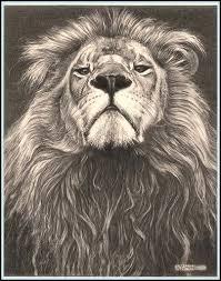 best 25 roaring lion tattoo ideas on pinterest roaring lion