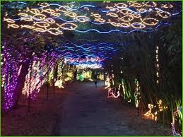 hudson gardens christmas lights lovely bellingrath gardens christmas lights 2016 house design and