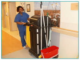 hiring a housekeeper ecolab chemicals for housekeeping