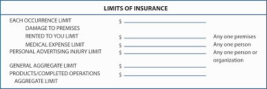accident injury report form template commercial general liability policy and commercial umbrella figure 15 14 section of the iso commercial general liability declaration page sample