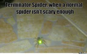 Cute Spider Meme - cute spider by strule meme center