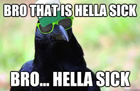 Hella Funny Memes - bro that is hella sick bro hella sick overused catchphrase