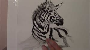 drawing a zebra 3d youtube