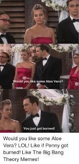 Big Bang Theory Meme - ould you like some aloe vera you just got burned would you like