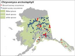 Sitka Alaska Map Region 10 Forest U0026 Grassland Health