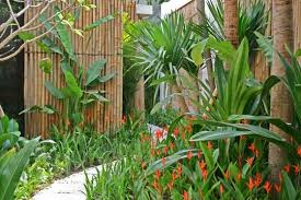 Tropical Gardening Ideas Cannas Agave Succulents And A Single Palm Make Up This Tropical