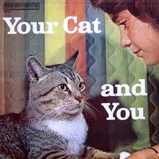 cat photo album cats